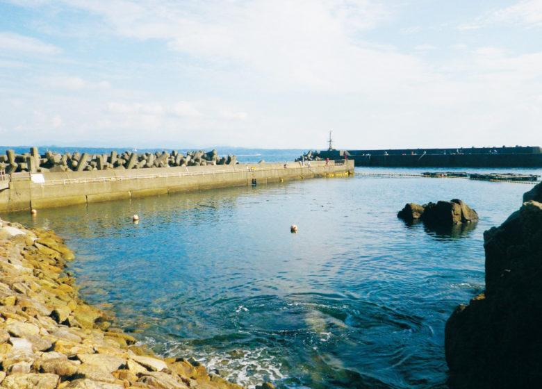 プランガイド樫野漁港 釣り堀