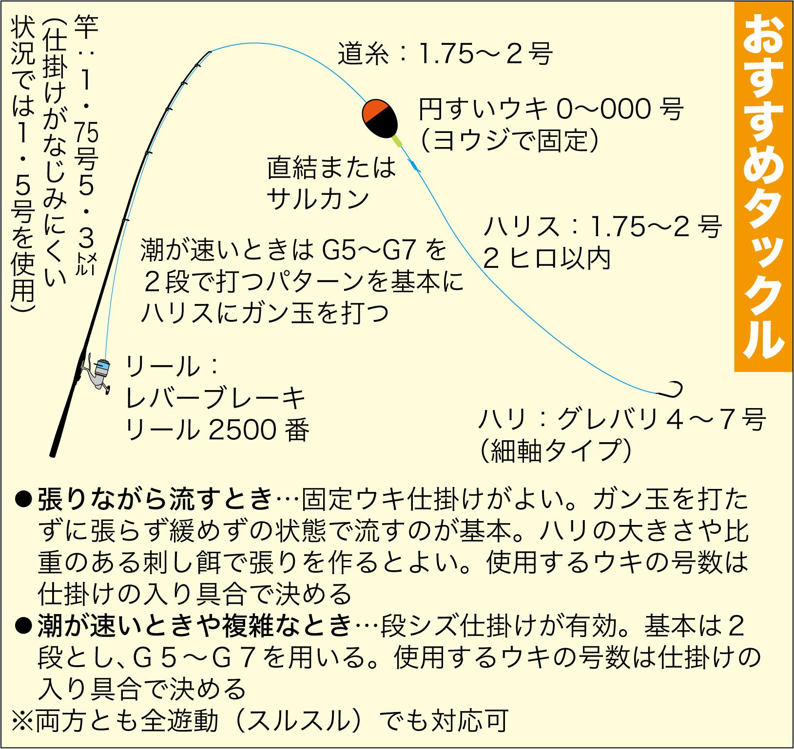 グレ釣り 張り・若狭3