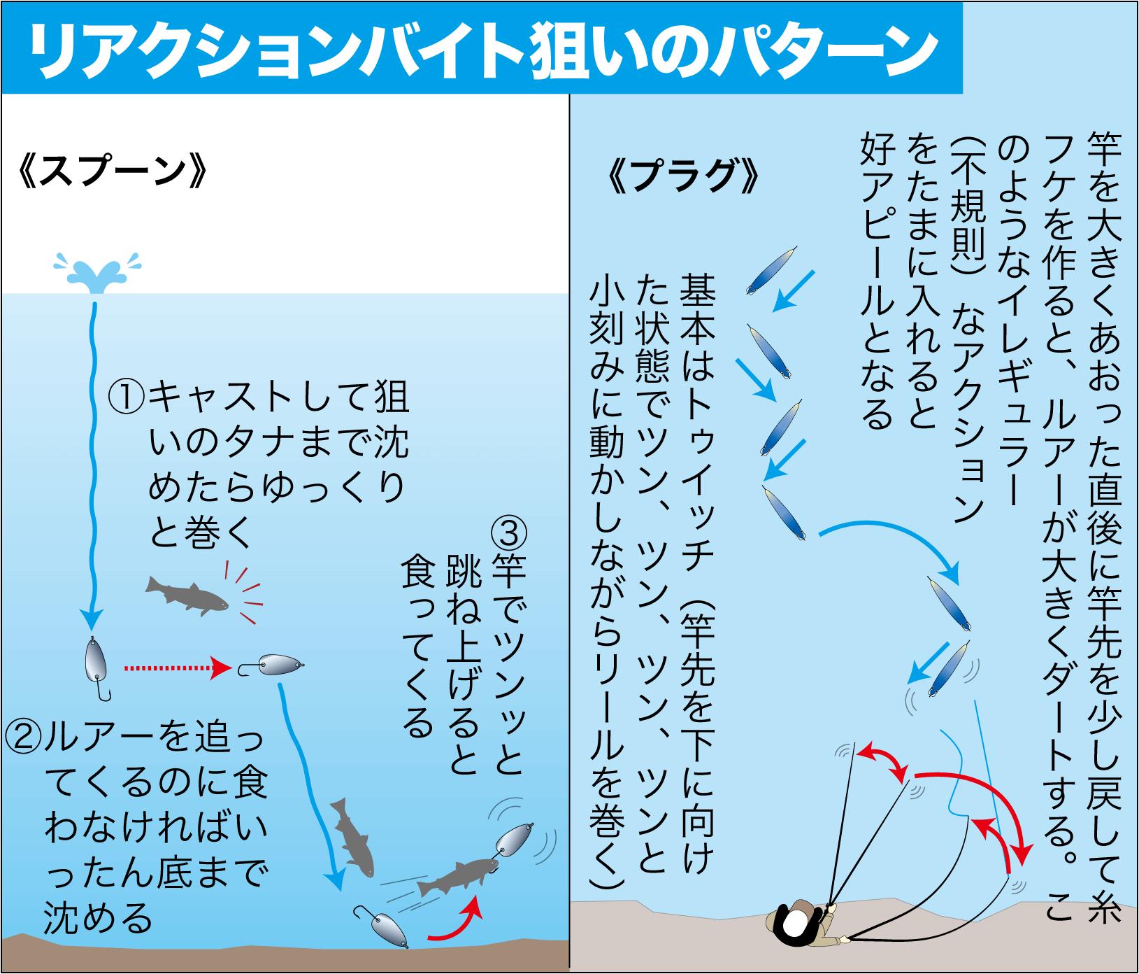 管理釣り場 朽木7