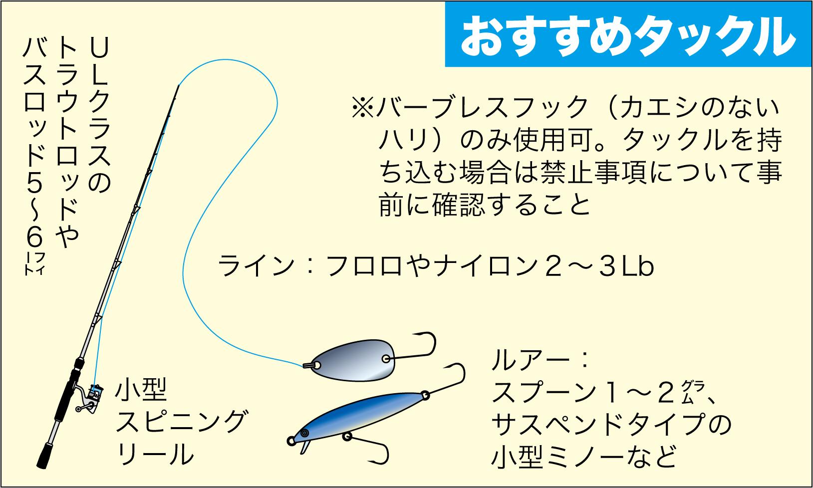 管理釣り場 朽木8