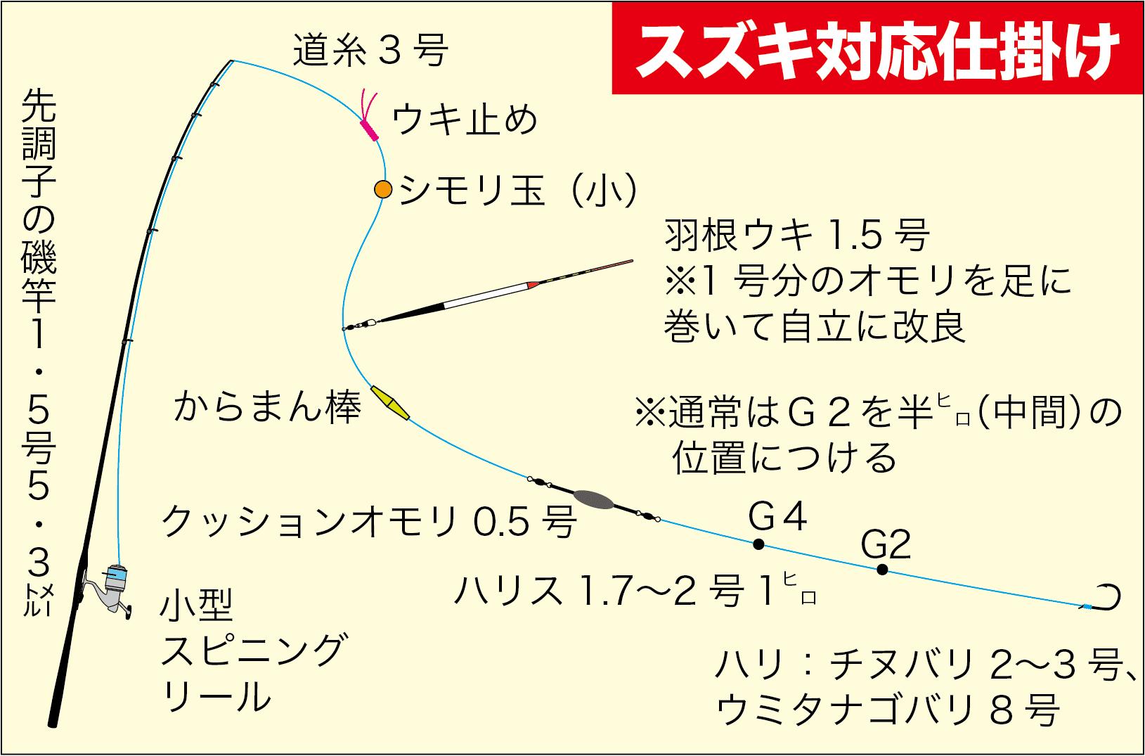 エビ撒き大型スズキ解説4