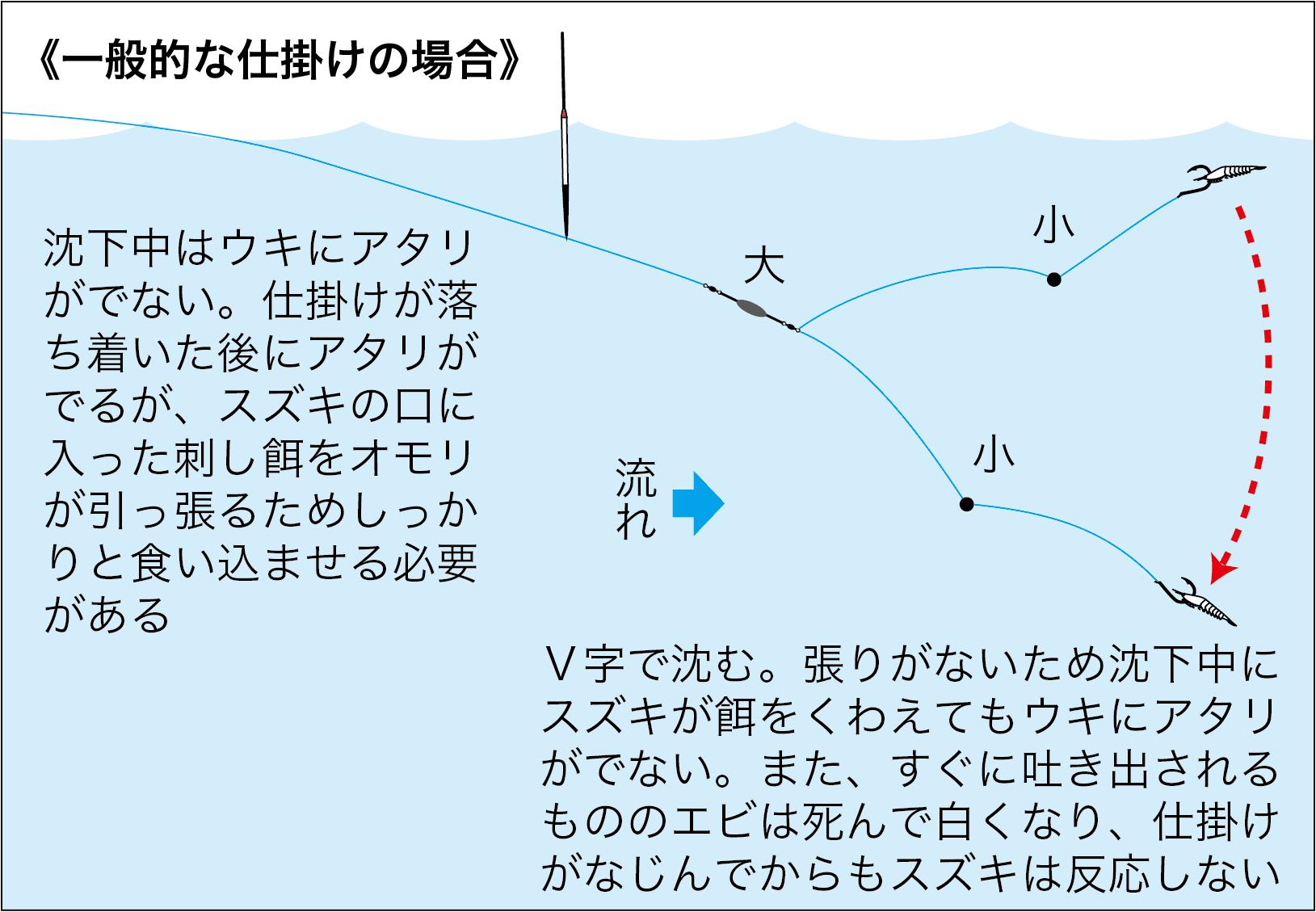 エビ撒き大型スズキ解説3