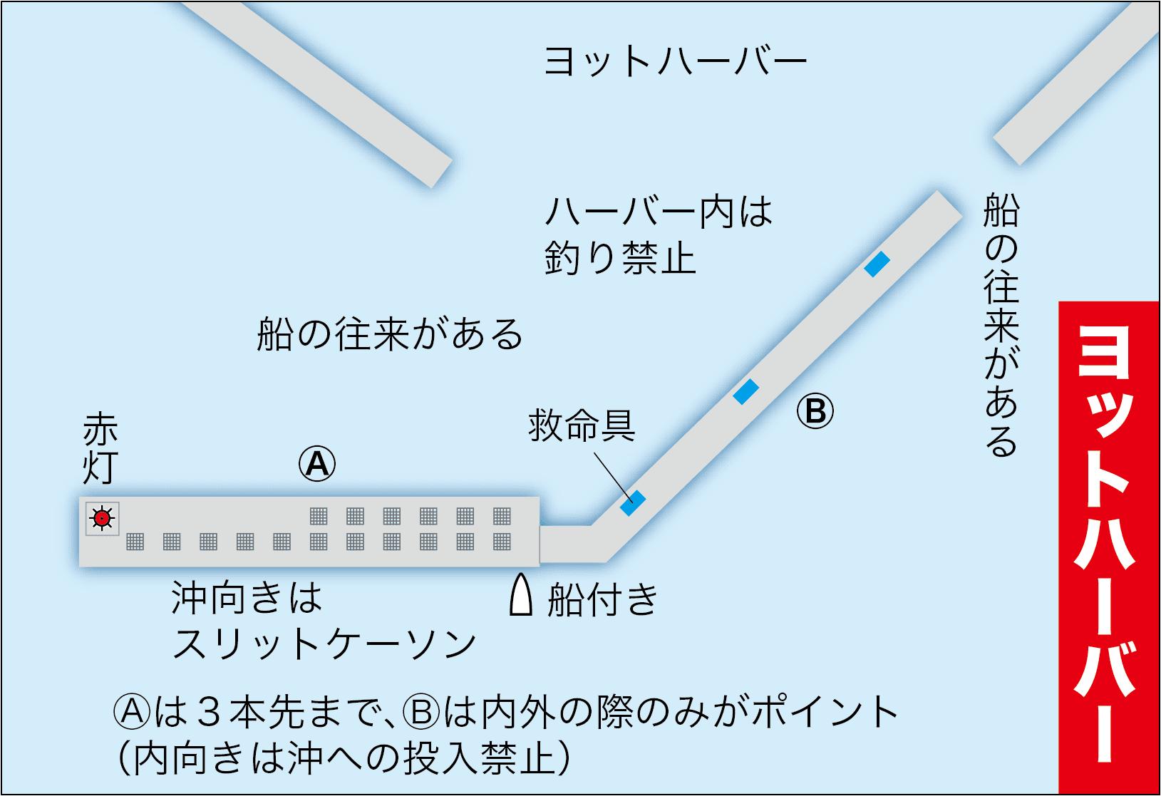 エビ撒き大型スズキ解説1