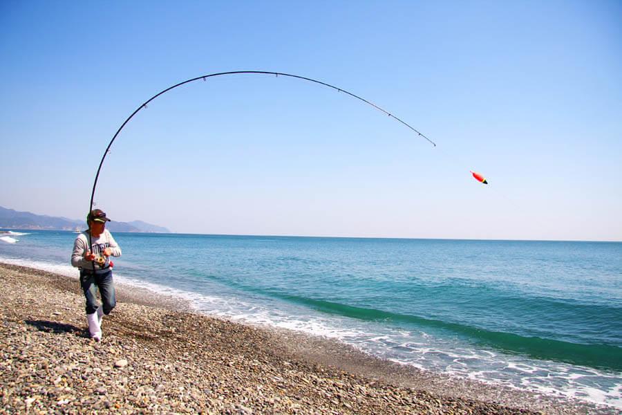 七里御浜カゴ釣り15