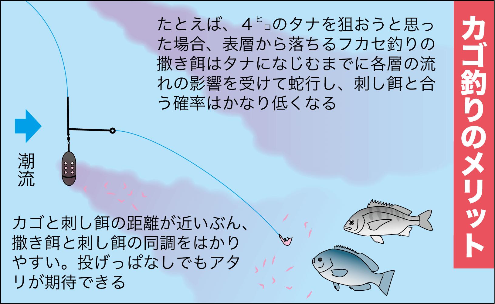 七里御浜カゴ釣り17