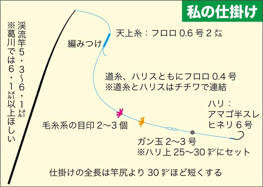 渓流アマゴヤマメ葛川山田10
