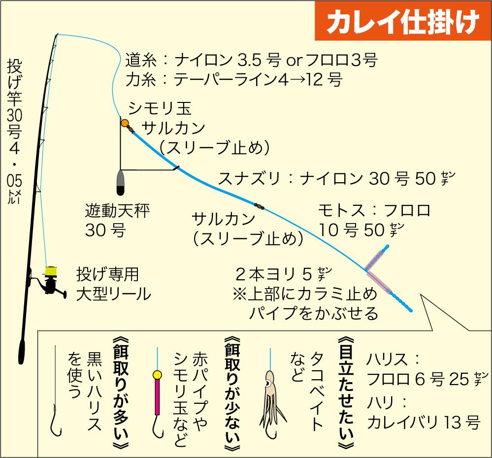 初夏カレイ1-6