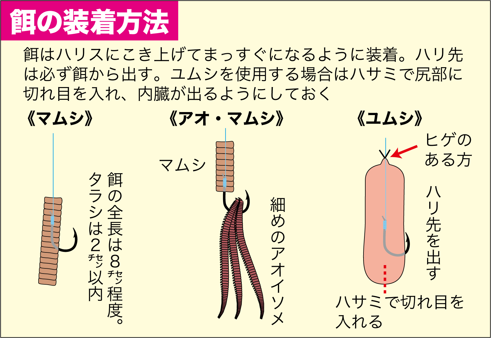 マダイプラン1-3