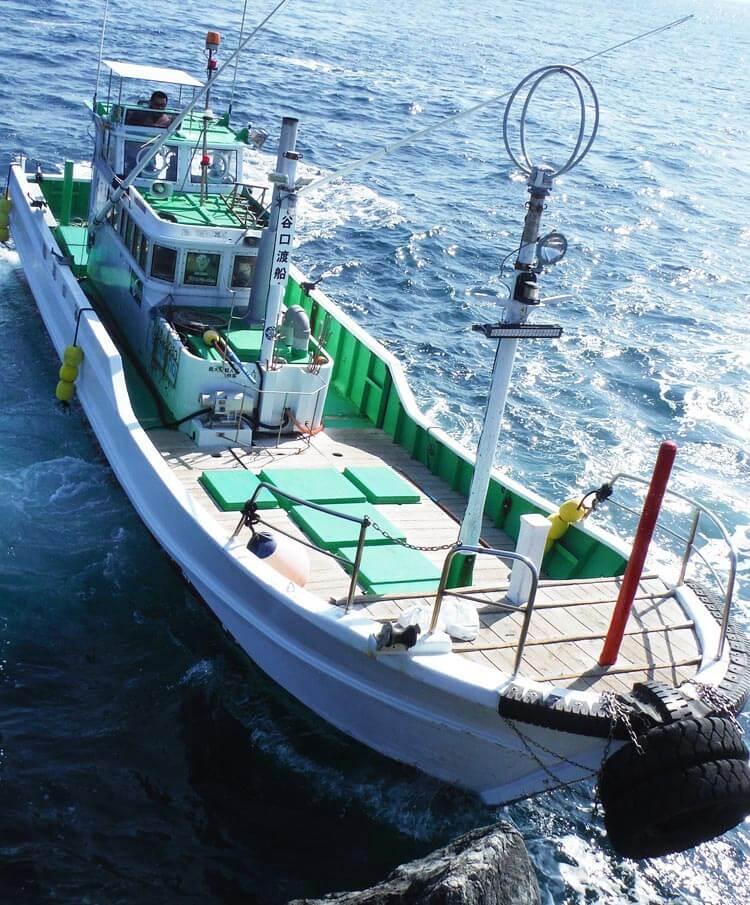 グレ釣り一直線10-9