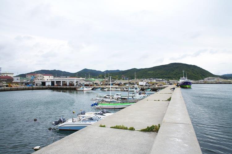釣り場ガイド湊港3