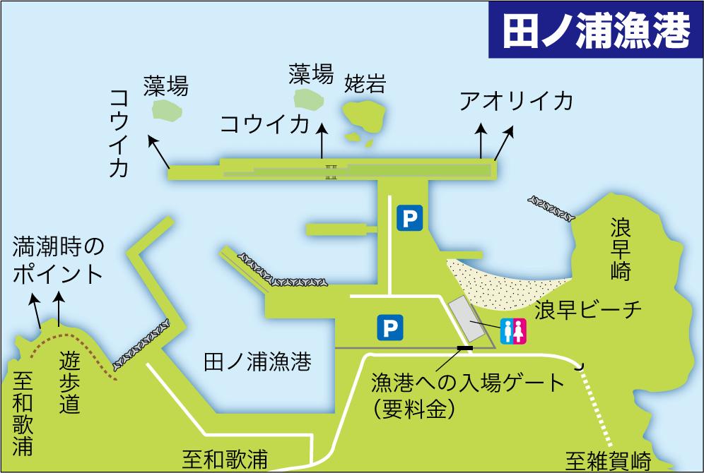大物釣り場田ノ浦漁港