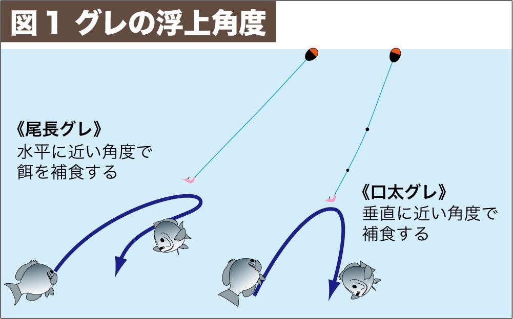 尾長グレ作法3-4