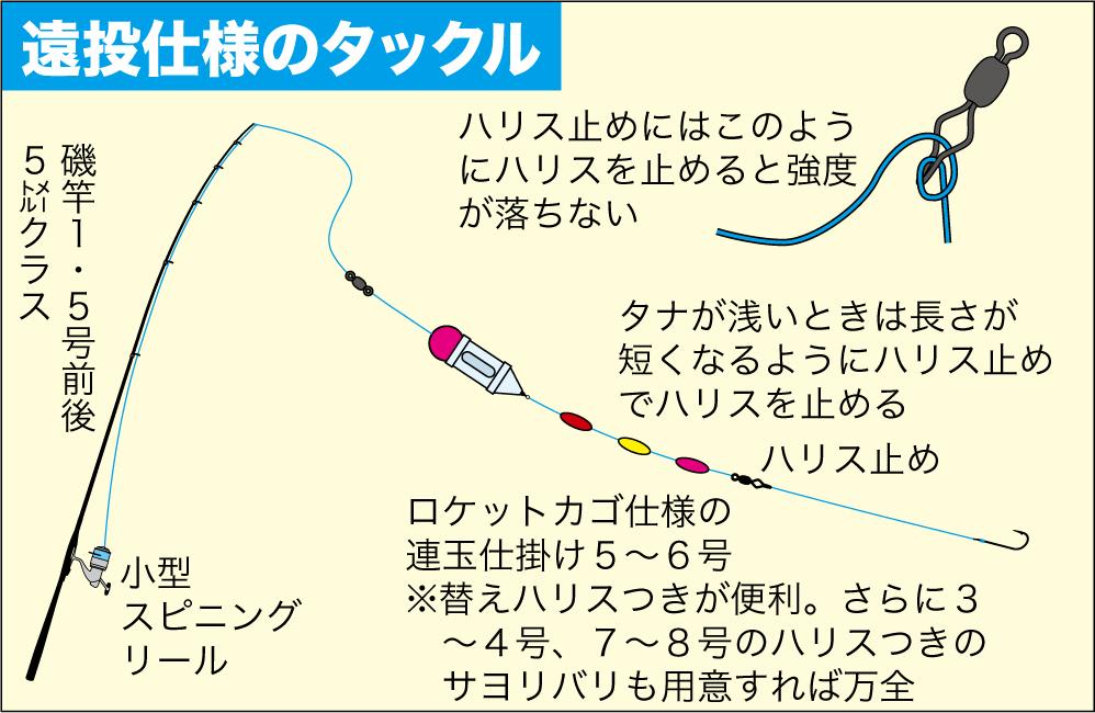 サヨリの釣り方11