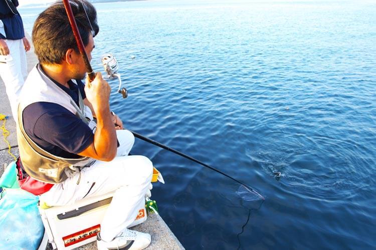 チヌQA紀州釣りハリ3