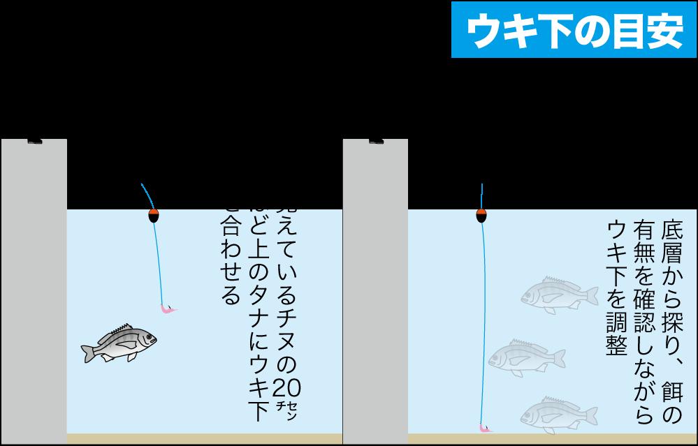 チヌqa水潮3