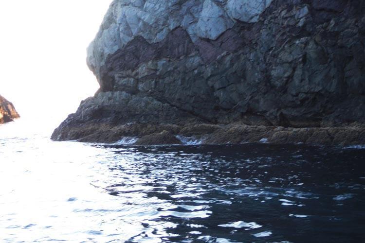 グレ釣り一直線12中泊1