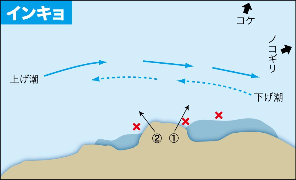 グレ釣り一直線12中泊11