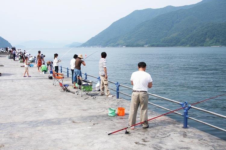 釣り公園ガイド 舞鶴親海公園5