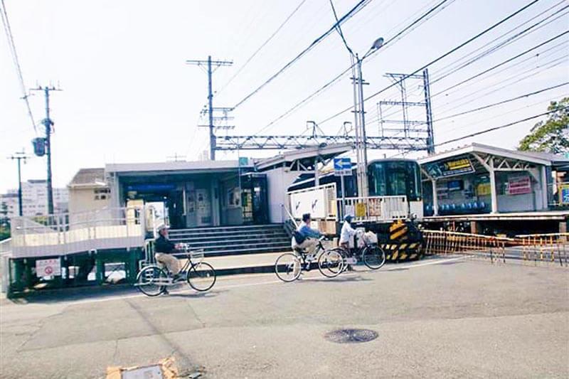 公共交通3武庫川テナガエビ5