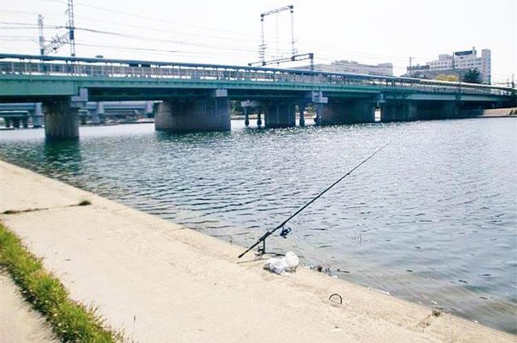公共交通3武庫川テナガエビ6