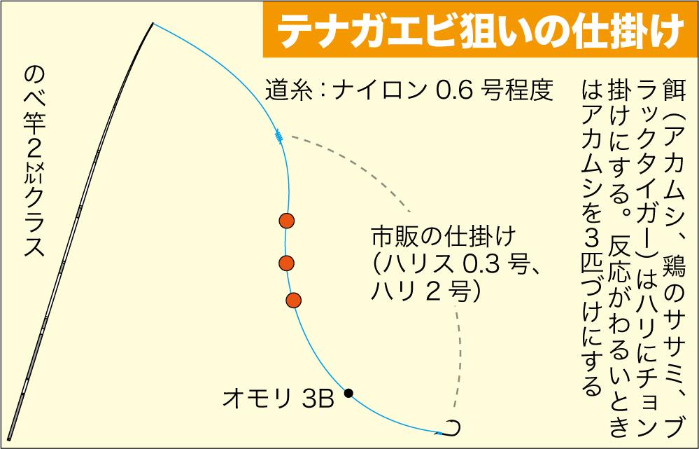 公共交通3武庫川テナガエビ10