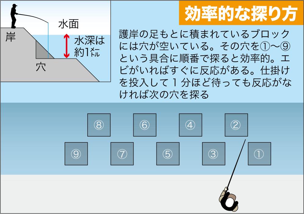 公共交通3武庫川テナガエビ14
