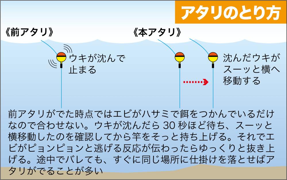 公共交通3武庫川テナガエビ12