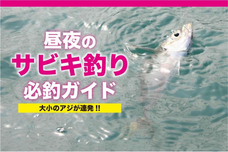 サビキ釣り必釣ガイド1