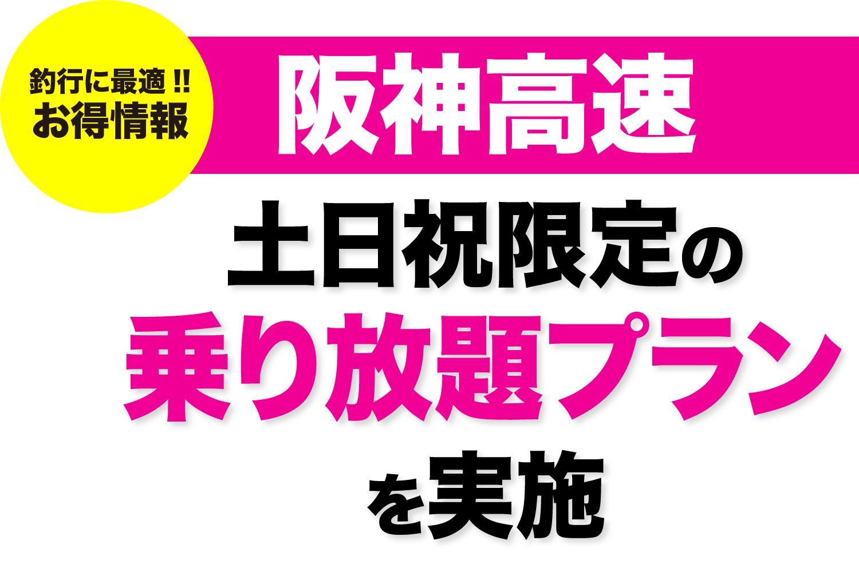 阪神高速乗り放題2019春1
