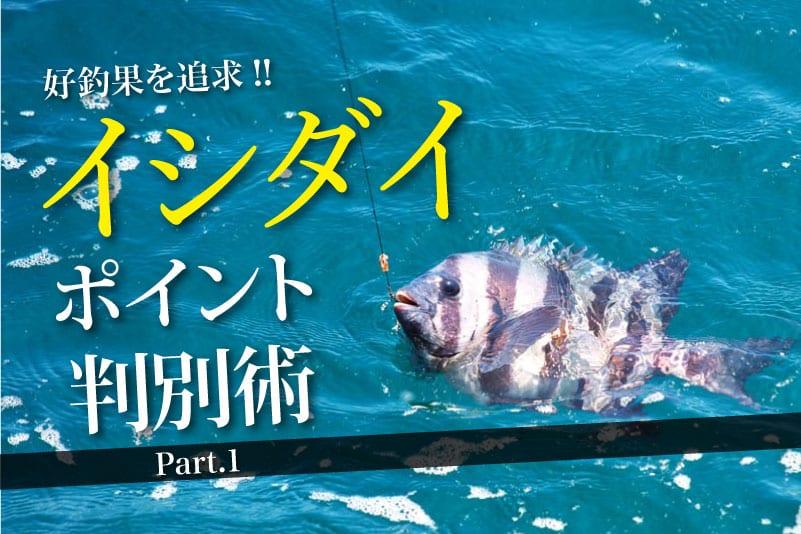 イシダイポイント判別術1-8