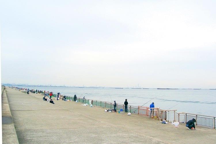 タコ釣り 南芦屋浜1