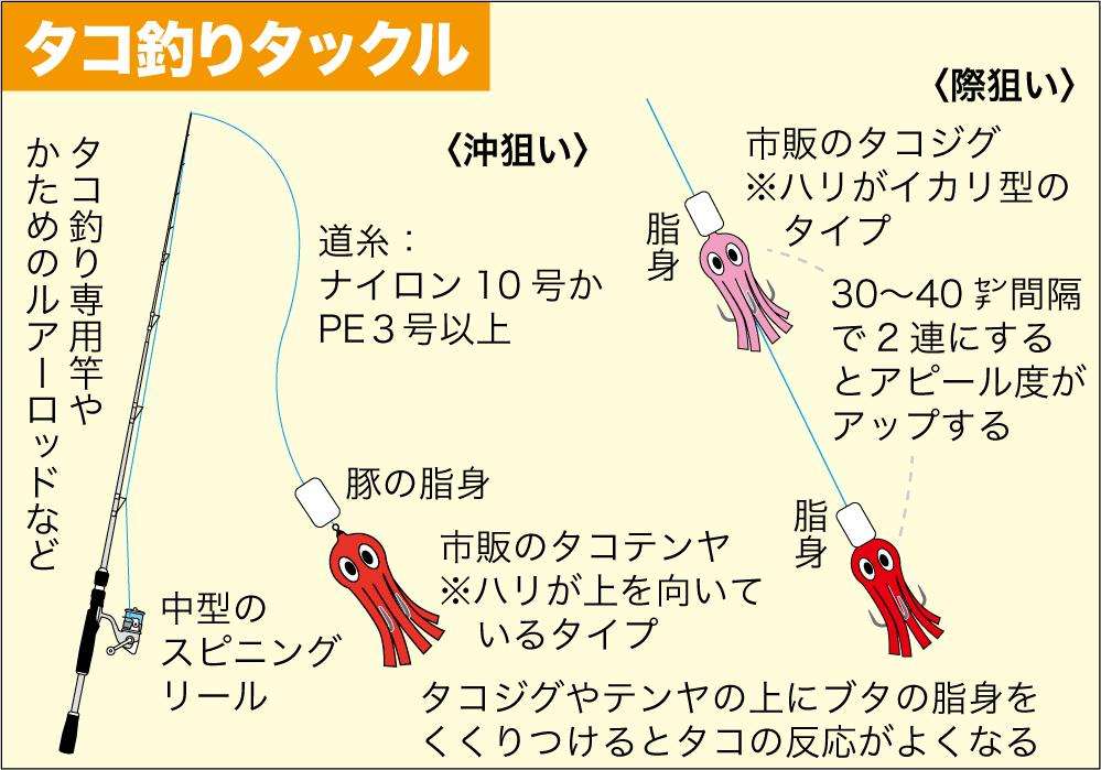 タコ釣り 南芦屋浜7