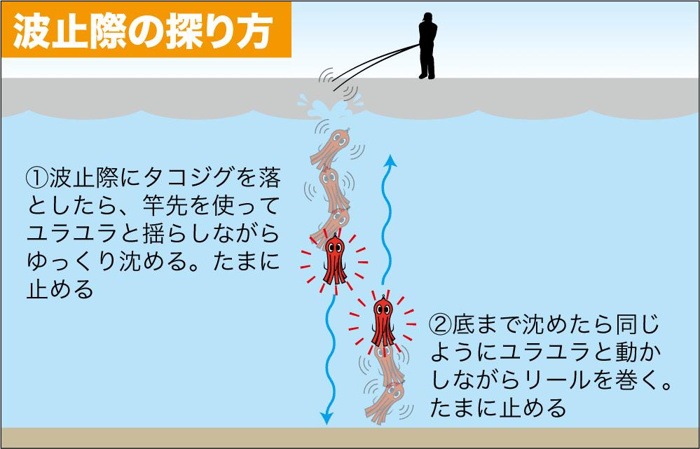 タコ釣り 南芦屋浜8