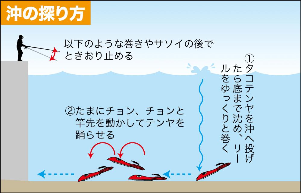 タコ釣り 南芦屋浜9