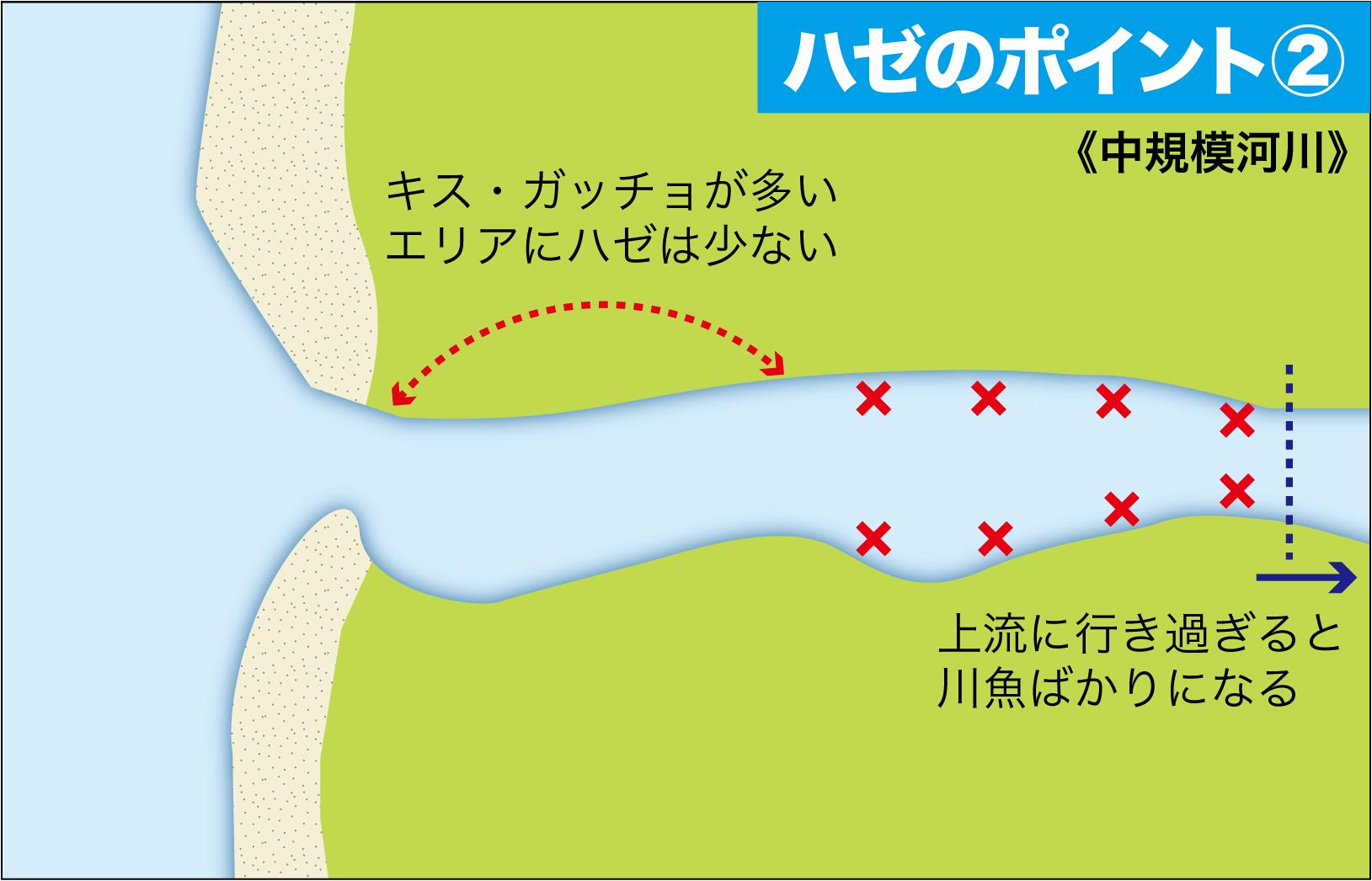 ハゼの釣り方14