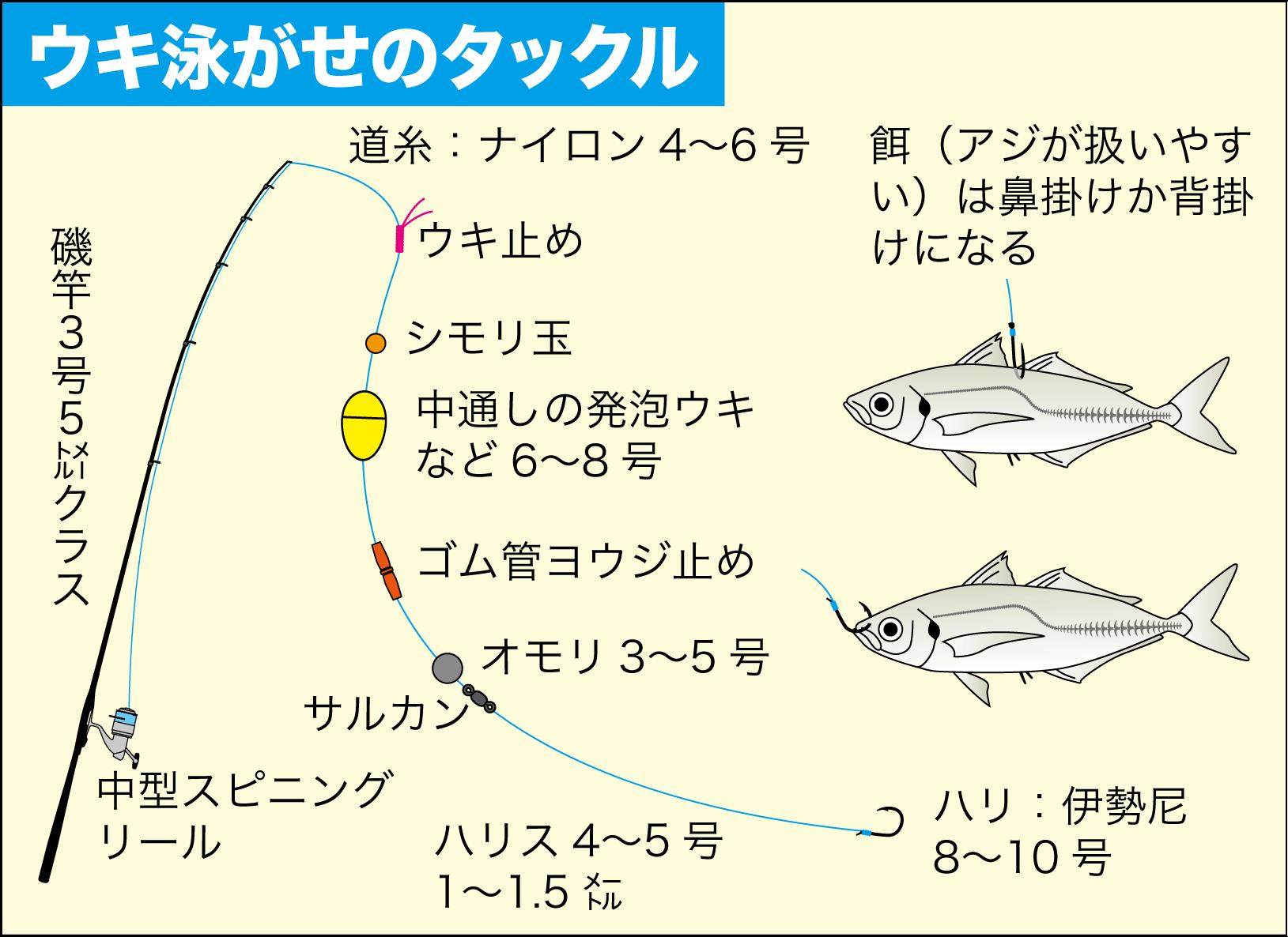 ハマチ(ブリ)の釣り方26