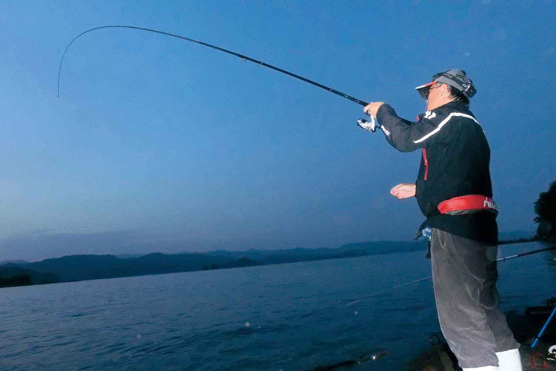 アオリイカ・タチウオのリレー釣り4