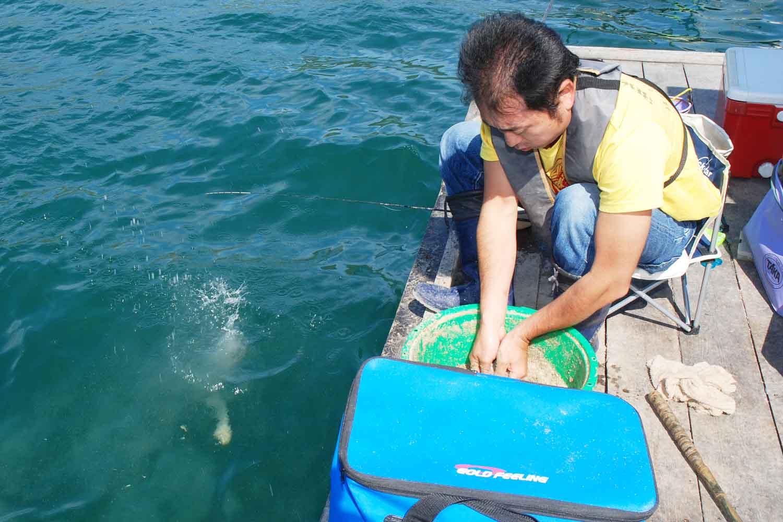 筏チヌ数釣りダンゴ使い2