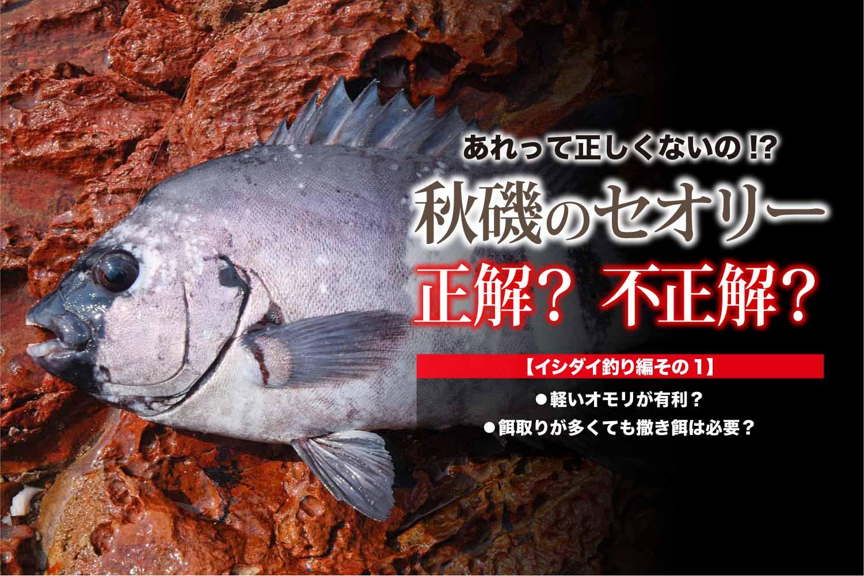 イシダイ秋磯セオリー1-1