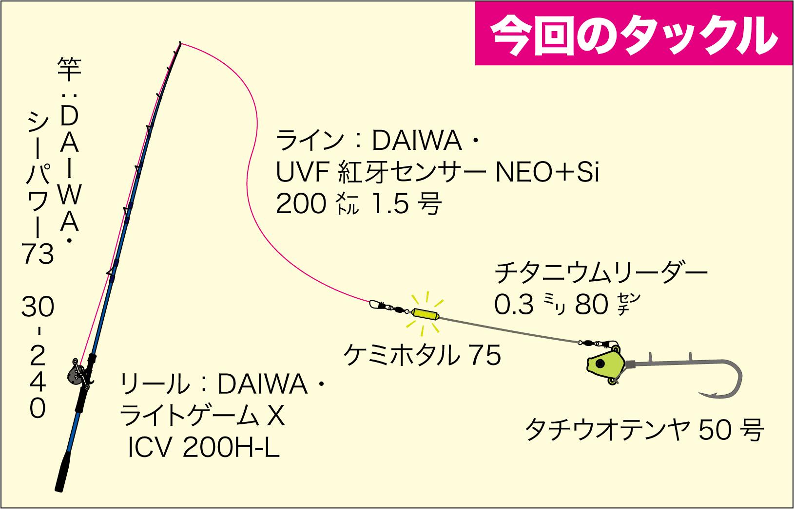 ゆかぼん3 タチウオ19