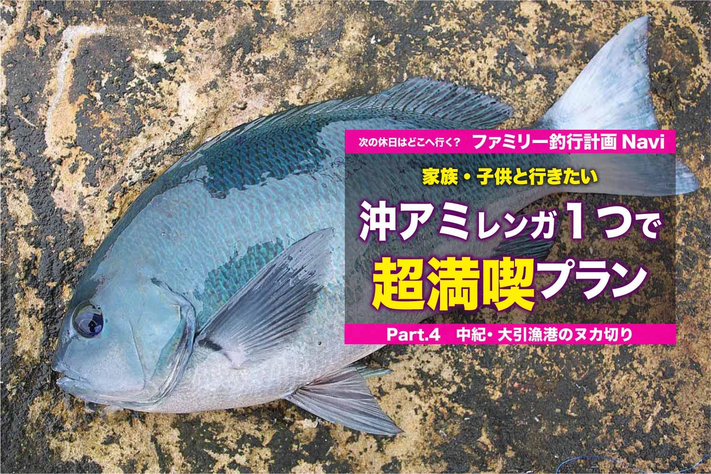 沖アミレンガ1つ大引漁港8