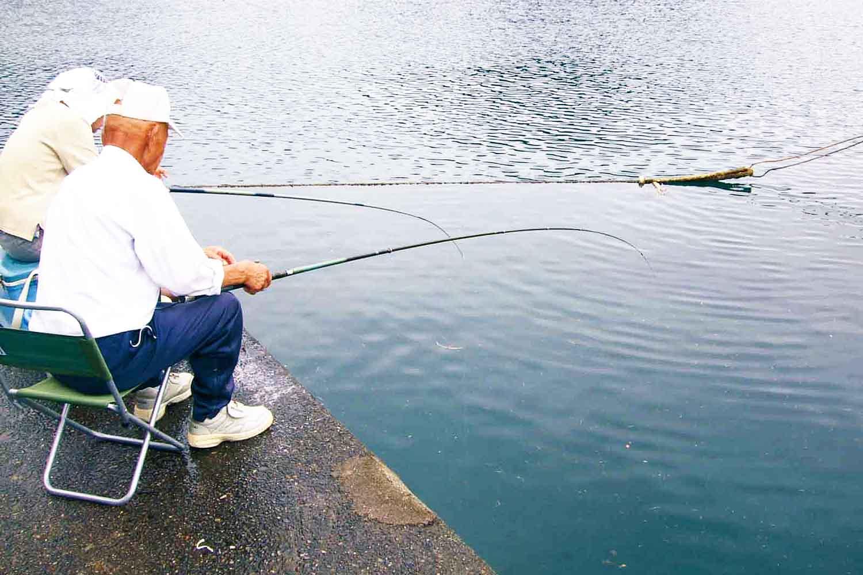 のべ竿大漁プラン2-1