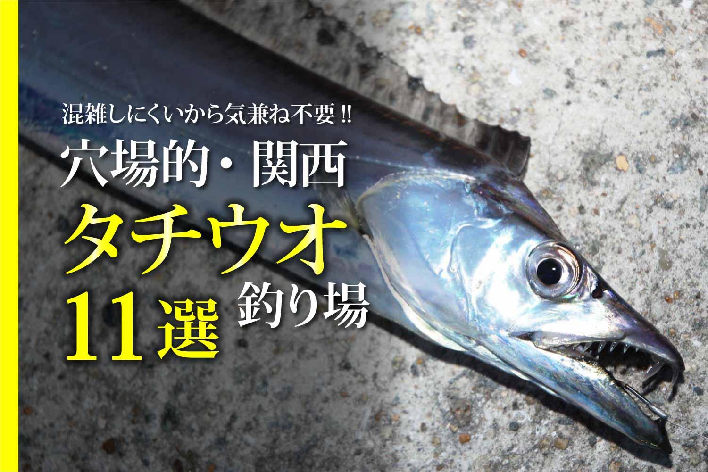 タチウオ(太刀魚)釣り場23