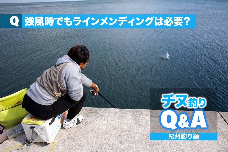 チヌ紀州釣り メンディング4