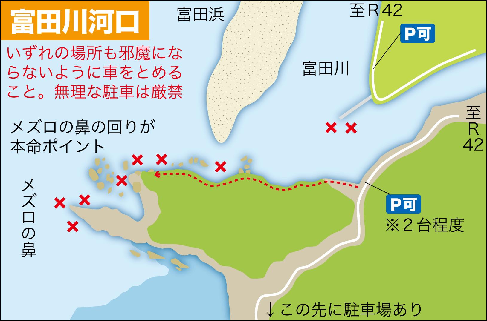 ライブショット13富田川河口21