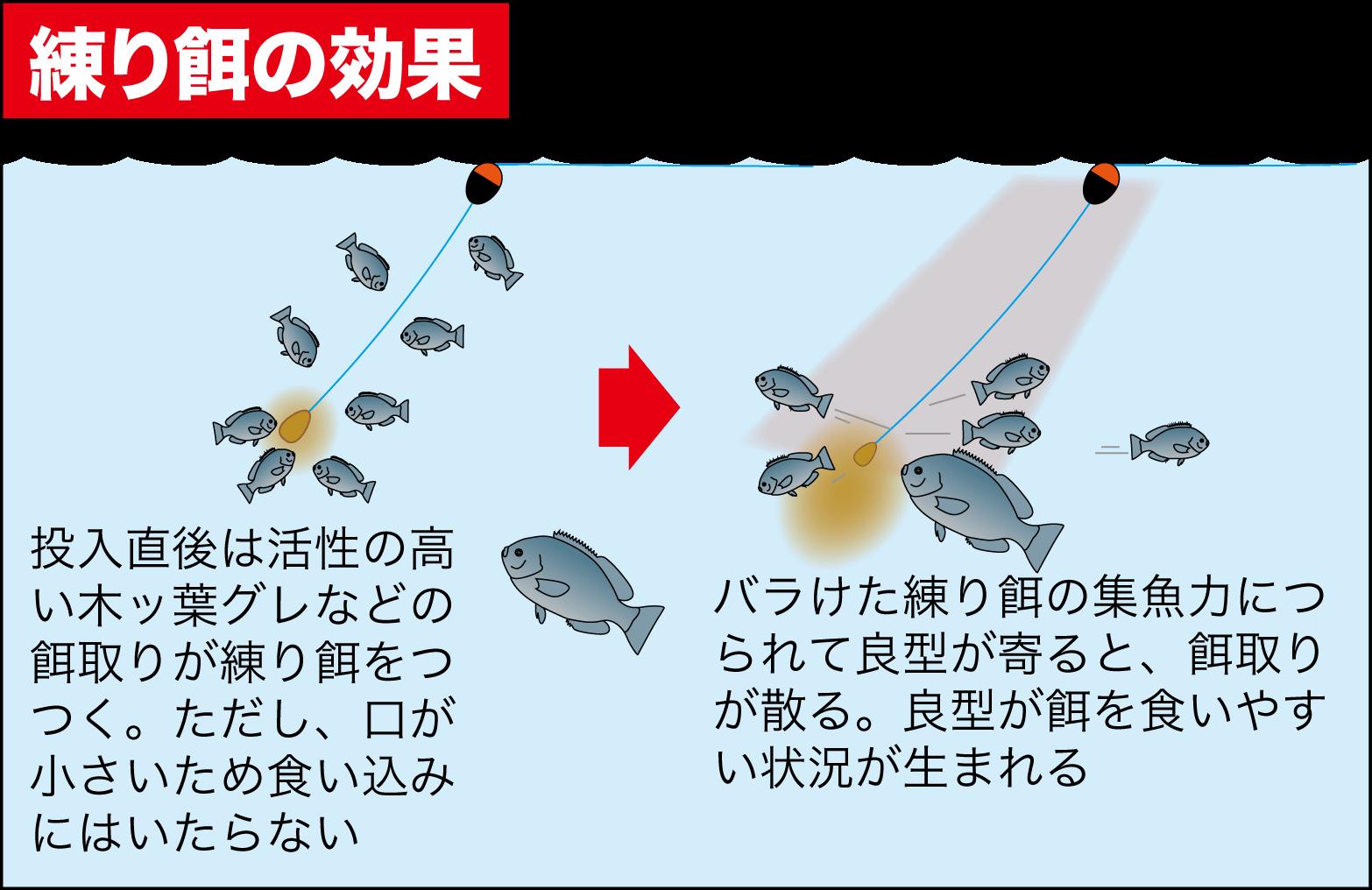 秋磯グレ2-9