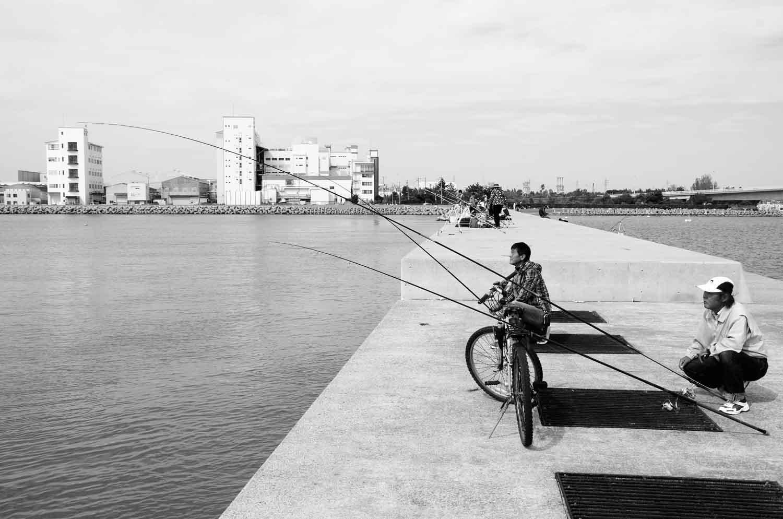 ビギナーカレイ釣り10