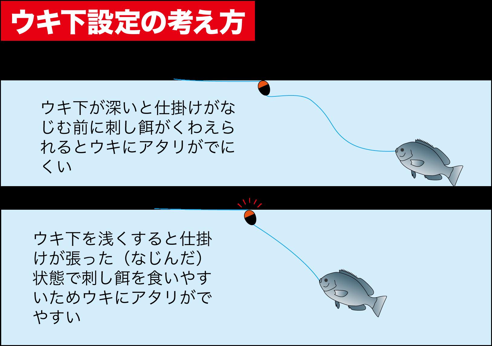 波止釣り南紀グレ11