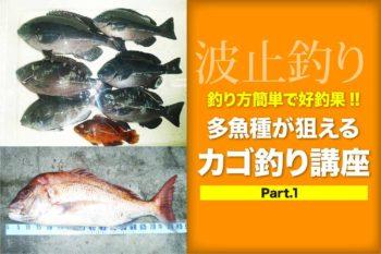 釣り方簡単で好釣果!! 多魚種が狙えるカゴ釣り講座 Part.1