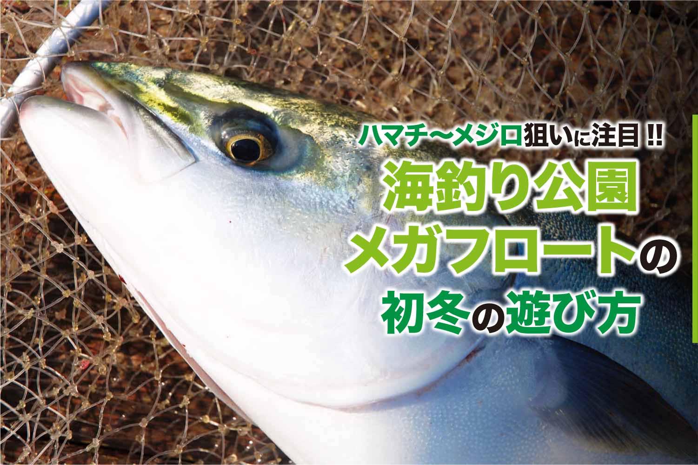 メガフロート飲ませ釣り11